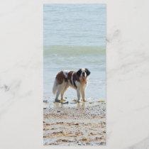 Saint Bernard dog at beach bookmark, gift idea