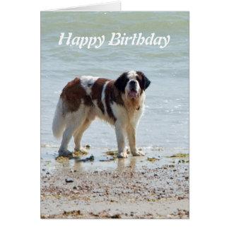 Saint Bernard dog at beach happy birthday card