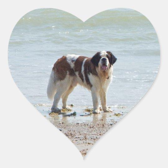 Saint Bernard dog at  the beach sticker, gift idea Heart Sticker