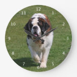 Saint Bernard dog beautiful photo Clocks