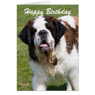 Saint Bernard dog happy birthday greetings card