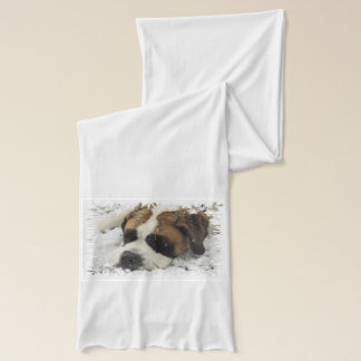 Saint Bernard Dog Scarf