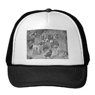 Saint Bernard Dogs and Crow Trucker Hat