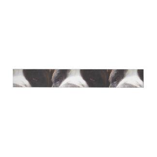 Saint-bernard eyes.png wrap around address label