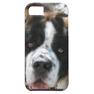 Saint Bernard Face iPhone 5 Vibe Case