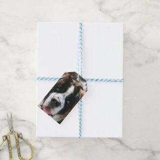 Saint Bernard Gift Tags