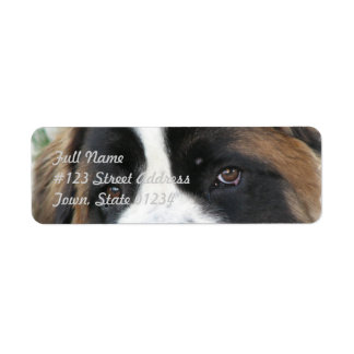Saint Bernard Mailing Label