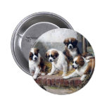 Saint Bernard puppies turtle cute painting dogs Pin