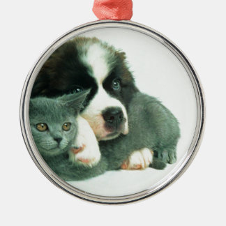 Saint bernard puppy and cat christmas ornaments