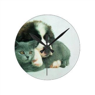 Saint bernard puppy and cat round clock
