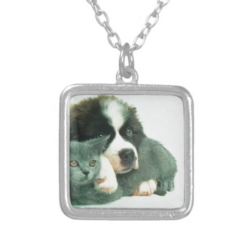 Saint bernard puppy and cat square pendant necklace