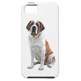 Saint Bernard Puppy Dog  iPhone 5 Case