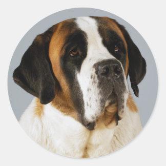 Saint Bernard Puppy Dog  Sticker / Label