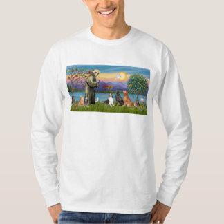Saint Fraancis - 3 dogs, 2 cats +++ T-Shirt
