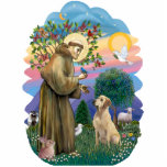 Saint Francis and Yellow Labrador Standing Photo Sculpture