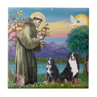 Saint Francis - Two Bernese Mountain Dogs Ceramic Tile