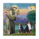 Saint Francis - Two Bernese Mountain Dogs Ceramic Tiles