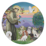 Saint Francis with 10 Dogs Plates