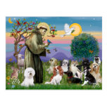 Saint Francis with 10 Dogs Post Card