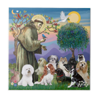 Saint Francis with 10 Dogs Small Square Tile