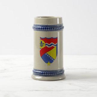 Saint Louis Missouri & Brcko Bosnia beer stein