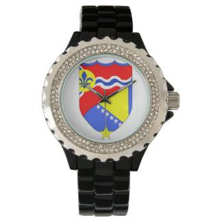 Saint Louis Missouri & Brcko Bosnia watch
