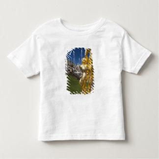 Saint Petersburg, Grand Cascade fountains 2 Toddler T-shirt