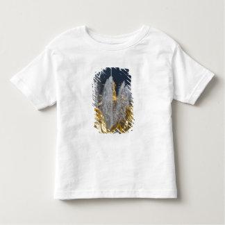 Saint Petersburg, Grand Cascade fountains 4 Toddler T-shirt