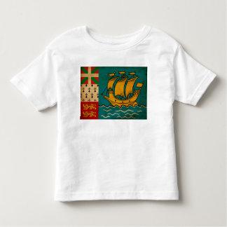Saint Pierre y bandera de Miquelon Camisetas