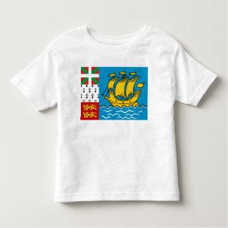 Saint Pierre y bandera de Miquelon T-shirts