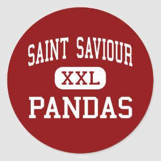 Saint Saviour - Pandas - High - Brooklyn New York Classic Round Sticker