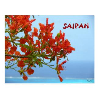 Saipan Flame Blossoms On An Ocean Of Blue Postcard