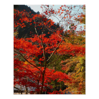 Saitama Prefecture, Japan Poster