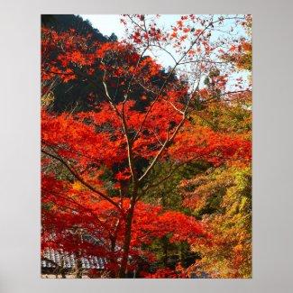 Saitama Prefecture, Japan Print
