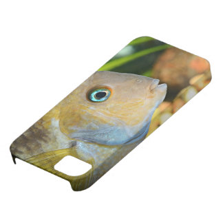 Sajica Cichlid iPhone SE/5/5s Case