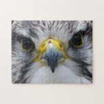 Saker Falcon Challenging Jigsaw Puzzle