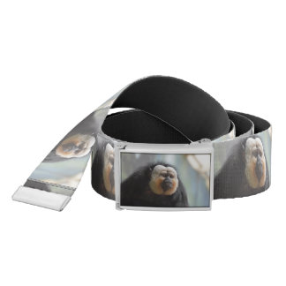 Saki Monkey Belt