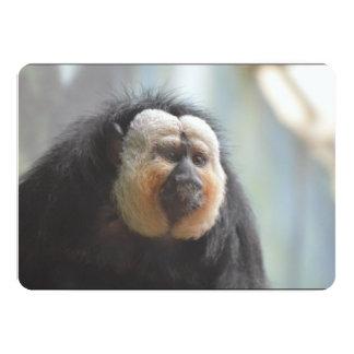 Saki Monkey Card