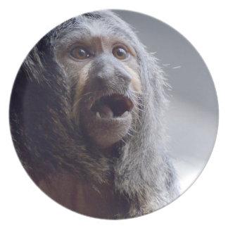 Saki Monkey Face Plate
