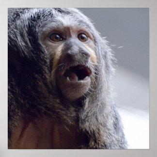 Saki Monkey Face Poster