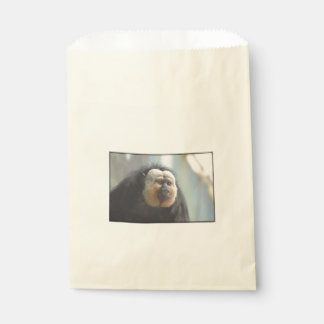 Saki Monkey Favor Bag