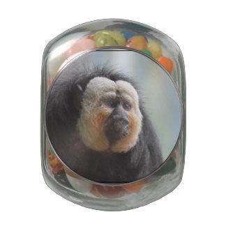 Saki Monkey Glass Jars