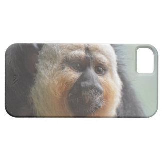 Saki Monkey iPhone SE/5/5s Case
