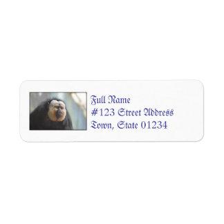 Saki Monkey Label