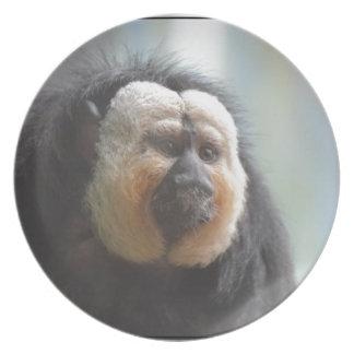Saki Monkey Melamine Plate