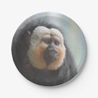 Saki Monkey Paper Plate