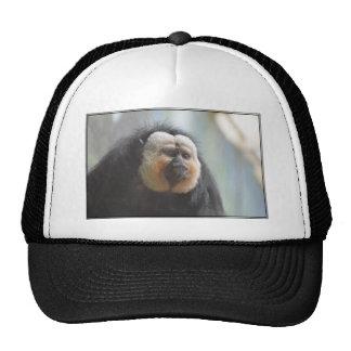 Saki Monkey Trucker Hat