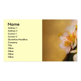 Sakura - A touch of spring Double-Sided Standard Business Cards (Pack Of 100)