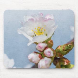 Sakura Blossom Mouse Pad