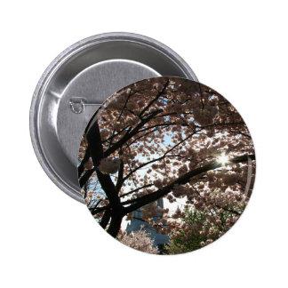 Sakura Branches Pinback Button